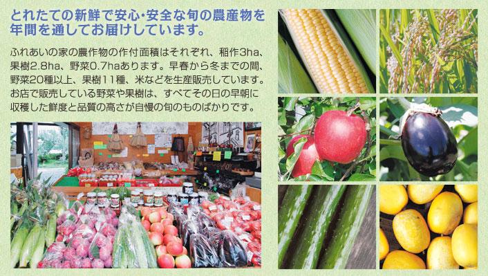 とれたての新鮮安心・安全な旬の農作物を年間を通してお届けします